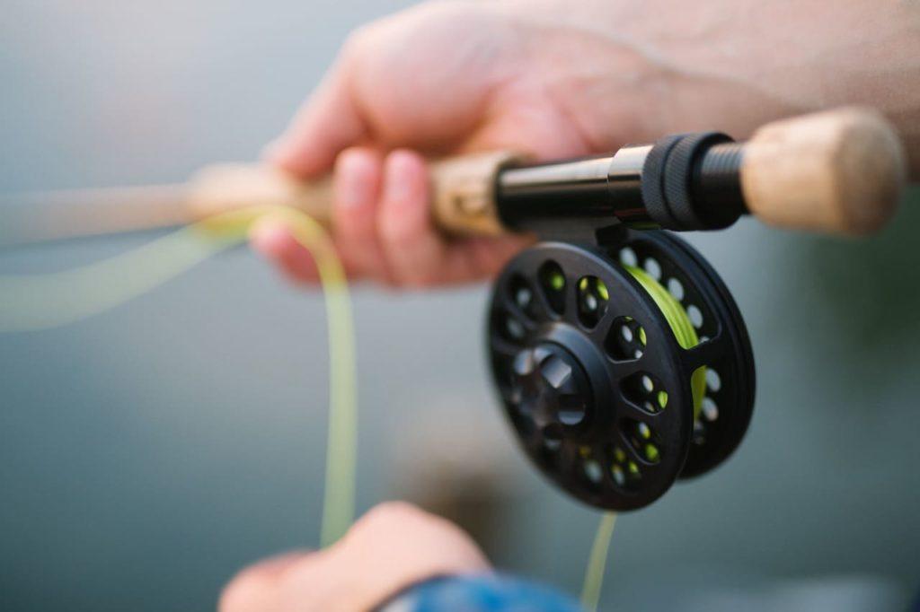 découvrir la pêche